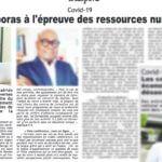 Les diasporas à l'épreuve des ressources numériques